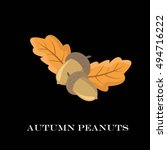 autumn peanuts on background.... | Shutterstock .eps vector #494716222