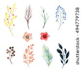 set watercolor floral branches... | Shutterstock . vector #494779738