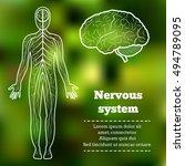 human body neurology anatomical ... | Shutterstock .eps vector #494789095