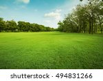 Landscape Of Grass Field And...