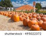 Pumpkin Patch Farm With Pyrami...