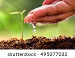 close up male hand watering... | Shutterstock . vector #495077032