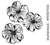 exotic flowers set. botanical... | Shutterstock .eps vector #495507532