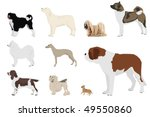 Set Of Ten Dog Breeds