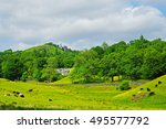 cattle grazing and a view of...