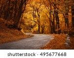 autumn landscape. road in the... | Shutterstock . vector #495677668