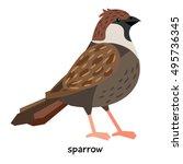 sparrow vector illustration | Shutterstock .eps vector #495736345