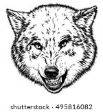 engrave isolated wolf... | Shutterstock . vector #495816082