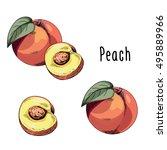vector illustration of peach on ...   Shutterstock .eps vector #495889966
