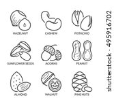basic nuts thin line icons set. ... | Shutterstock .eps vector #495916702
