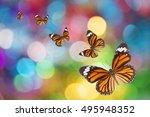 butterfly on christmas... | Shutterstock . vector #495948352