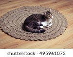 Cat On Brown Crochet Carpet