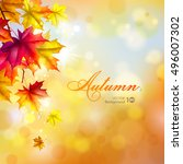 autumn background. leaves of... | Shutterstock .eps vector #496007302