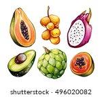 tropical fruits set. exotic... | Shutterstock . vector #496020082