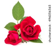 Stock photo red rose flower bouquet isolated on white background cutout 496056565