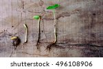sequence of pull out ... | Shutterstock . vector #496108906