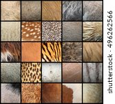 Large Collection Of Animal Fur...