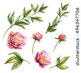 Peony. Watercolor Floral Set...