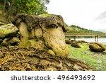 Beautiful Mushroom Rocks In...