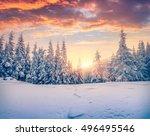 Splendid Christmas Scene In Th...