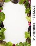 Fresh Salad Leaves Creating A...