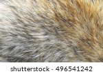 Real Fox Animal Fur  Closeup....