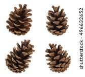 Set Of Cones Of Coniferous...