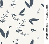 sage and thyme simple elegant... | Shutterstock .eps vector #496830286