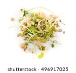 mix of sprouted flax  peas ... | Shutterstock . vector #496917025