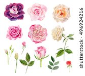 set collection arrangement... | Shutterstock . vector #496924216