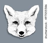 vector engraved young fox... | Shutterstock .eps vector #497055586