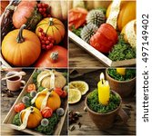 collage with autumn plants. | Shutterstock . vector #497149402