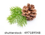 christmas decoration on the... | Shutterstock . vector #497189548