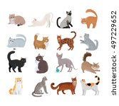 Stock vector set of icons with cats flat design vector variety breeds cats in different poses sitting 497229652