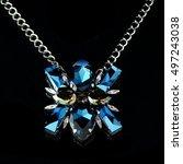 jewelry | Shutterstock . vector #497243038