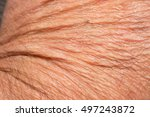 texture of the skin with... | Shutterstock . vector #497243872