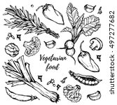 hand drawn vintage herbs and... | Shutterstock .eps vector #497277682