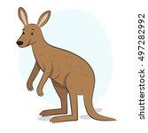 kangaroo illustration | Shutterstock .eps vector #497282992