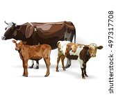 cow calf brown  vector | Shutterstock .eps vector #497317708