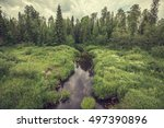 forest river on the summer... | Shutterstock . vector #497390896
