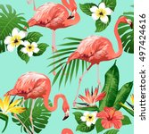 flamingo bird and tropical... | Shutterstock .eps vector #497424616