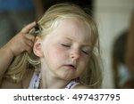 little girl moving hait behind... | Shutterstock . vector #497437795