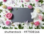 beautiful pink and white... | Shutterstock . vector #497508166