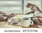 cup of coffee  book with autumn ...   Shutterstock . vector #497515786