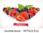 forest berry. sweet fruit.... | Shutterstock .eps vector #497621512