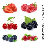 forest berry. sweet fruit.... | Shutterstock .eps vector #497621515