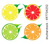 abstract vector logo for citrus ... | Shutterstock .eps vector #497734252