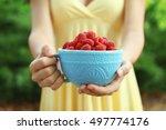 woman holding fresh raspberries ... | Shutterstock . vector #497774176