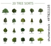 twenty different tree sorts... | Shutterstock .eps vector #497821135