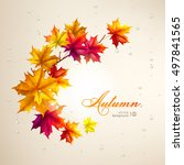 autumn background. leaves of... | Shutterstock .eps vector #497841565